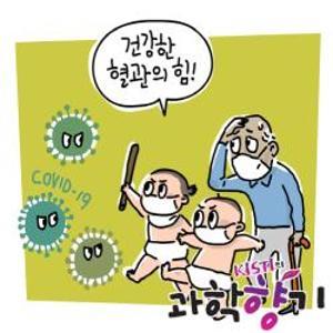 건강한 혈관, 코로나19 피해 줄인다