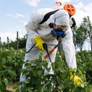 농산물 잔류농약 500여 종을 3시간 만에 검사한다