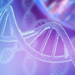 유전물질 조각 선택적으로 변형하는 기술 개발