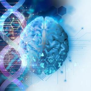 뇌 절제 않고도 난치성 뇌전증 일으키는 유전자 찾았다