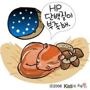 개구리와 곰의 겨울잠은 다르다!?