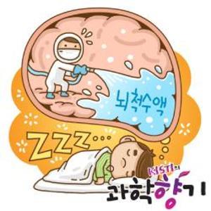 잠은 뇌를 청소하는 시간